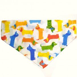 Kutyakendő színes tacsi mintával